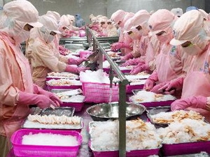 Vietnam exports more shrimp to Australia