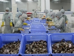 VN's shrimp export reaches $2.25 billion in 2012